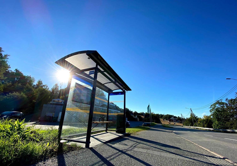 Busskskur sol blåhimmel